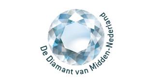 logo_diamant_blauw